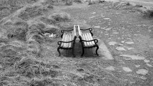 Seat 12