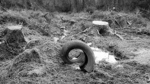 Tyre 5